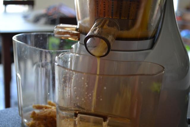 Healthy Kitchen Healthy Budget Fizzy Apple Juice2